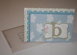 Baby card & vellum envelope