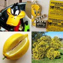 Robyn w yellow