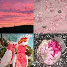 Robyn w pink