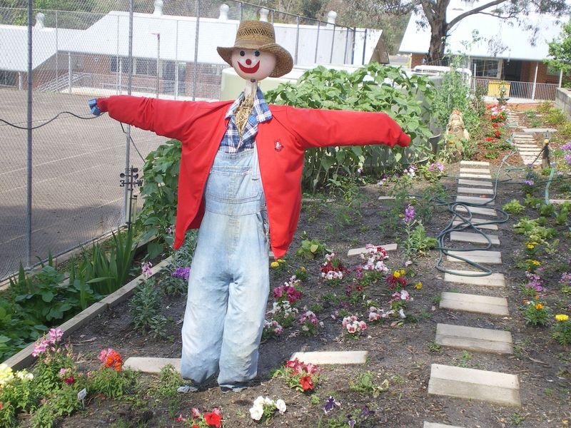 Scarecrow at Akuna Garden