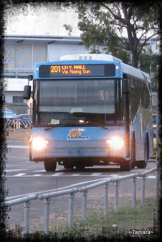 18-Tamara-Transport