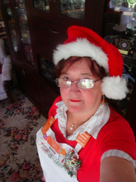 Lyn in Santa Hat VIP night