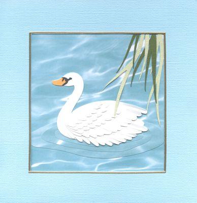 Swan-card