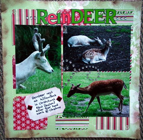 ReindeerLayout
