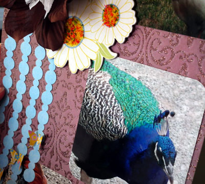 Sparkledetail