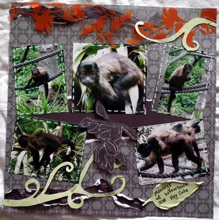 Monkeylayout