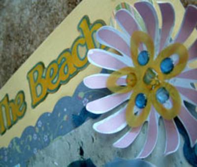 Beachcloseup
