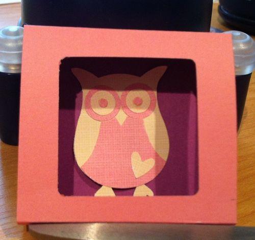 Owl box closed by Christine