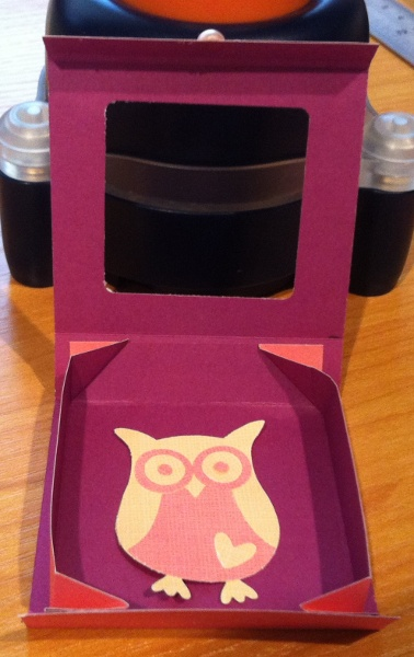 Owl box open by Christine