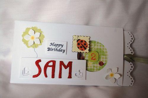 Sam - by Lyn