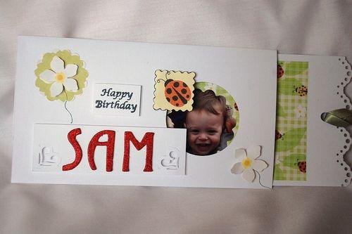 Sam slider card by Lyn