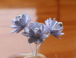 Lianne's Flowers- flower lever punch